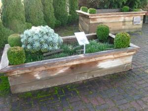 Raised Bed Gardening - FS075E